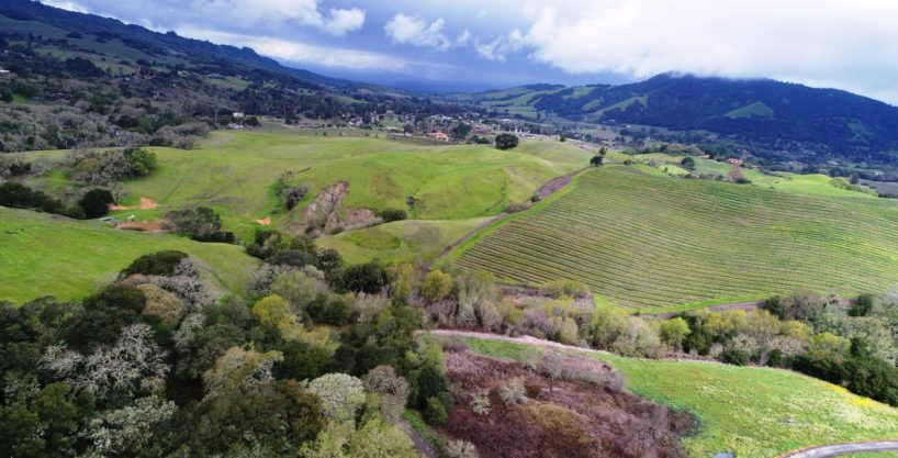 Bennett Valley Equestrian & Vineyard Estate
